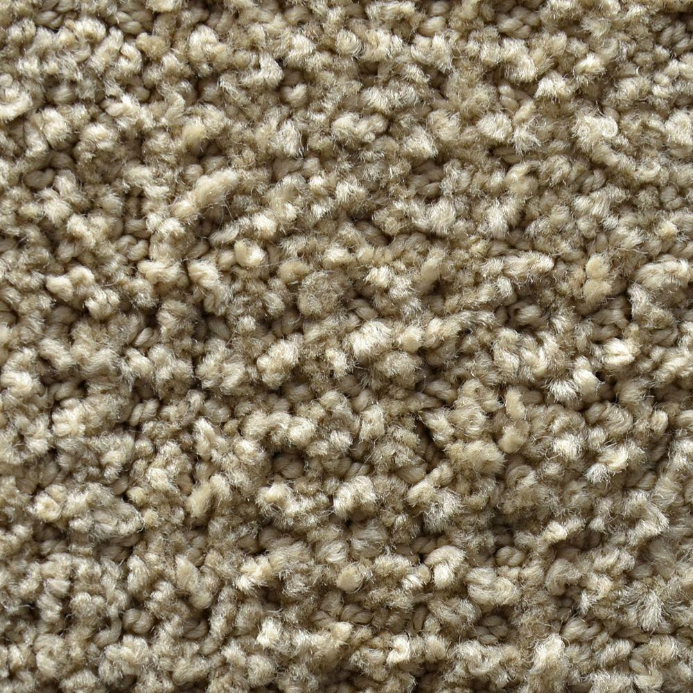Carpet Sample - Fashion Feature - Color Montrose Pattern 8 in.