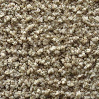 Carpet Sample - Fashion Feature - Color Montrose Pattern 8 in. x 8 in.