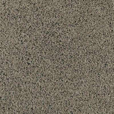 Carpet Sample - Ashcraft II - Color Pine Needle Texture 8 in. x 8 in.