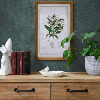 """23.75 in. x 16.75 in Botanical Illustration"""" Printed Wall Art"""
