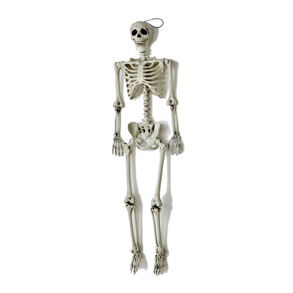 60 in. Halloween Life Size Hanging Skeleton