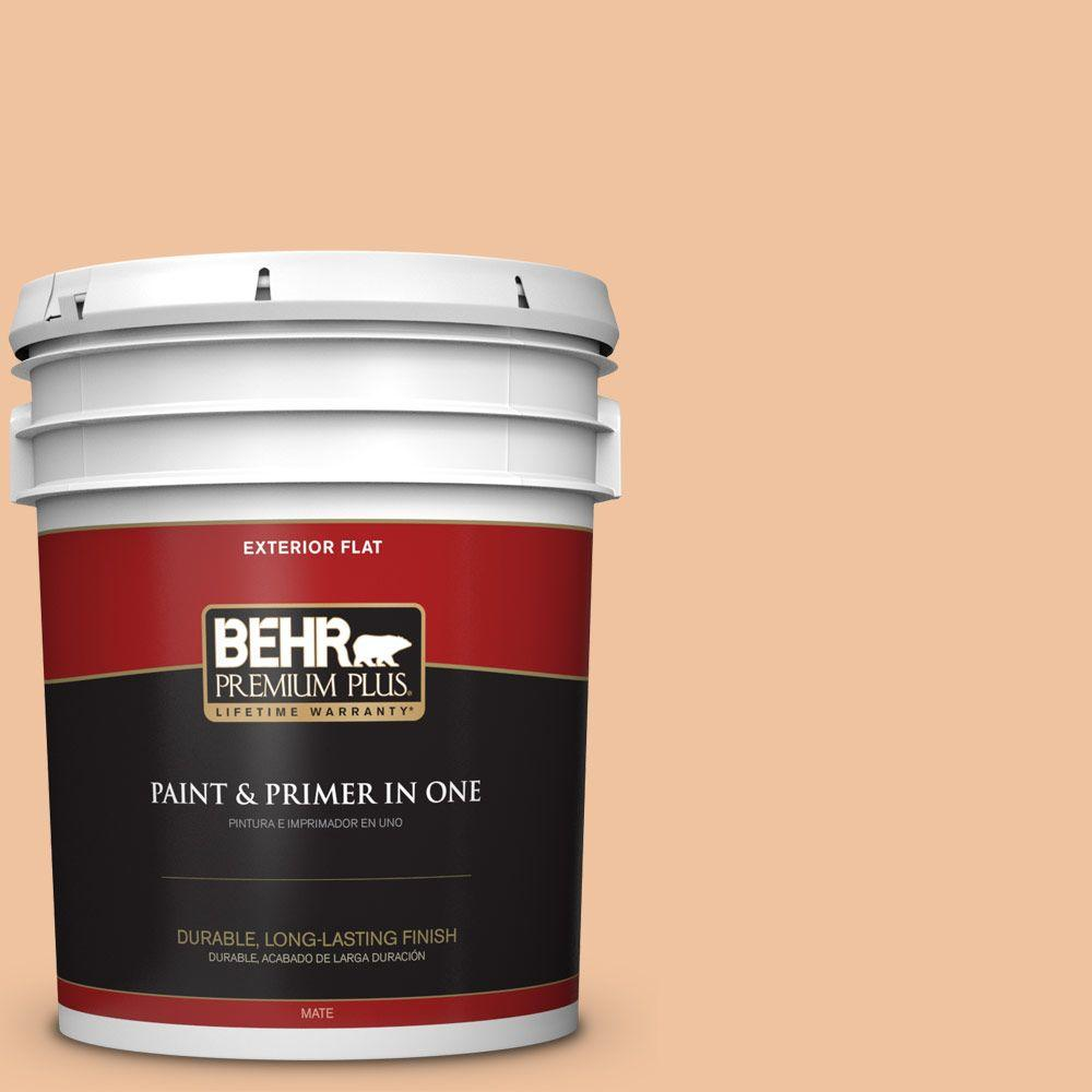 5-gal. #M220-3 Carving Party Flat Exterior Paint