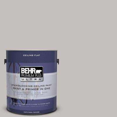 1-gal. #PPU18-10 Ceiling Tinted to Natural Gray Interior Paint