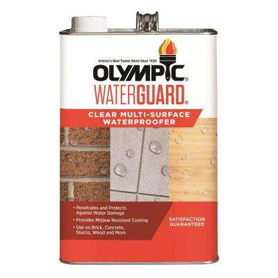 Waterguard 1 gal. Clear Multi-Surface Waterproofing Sealant