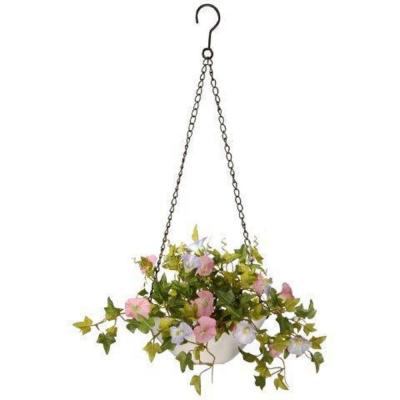 9 in. Morning Glory Plant Hanging Basket