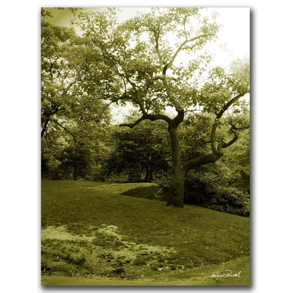 14 in. x 19 in. Central Park II Canvas Art