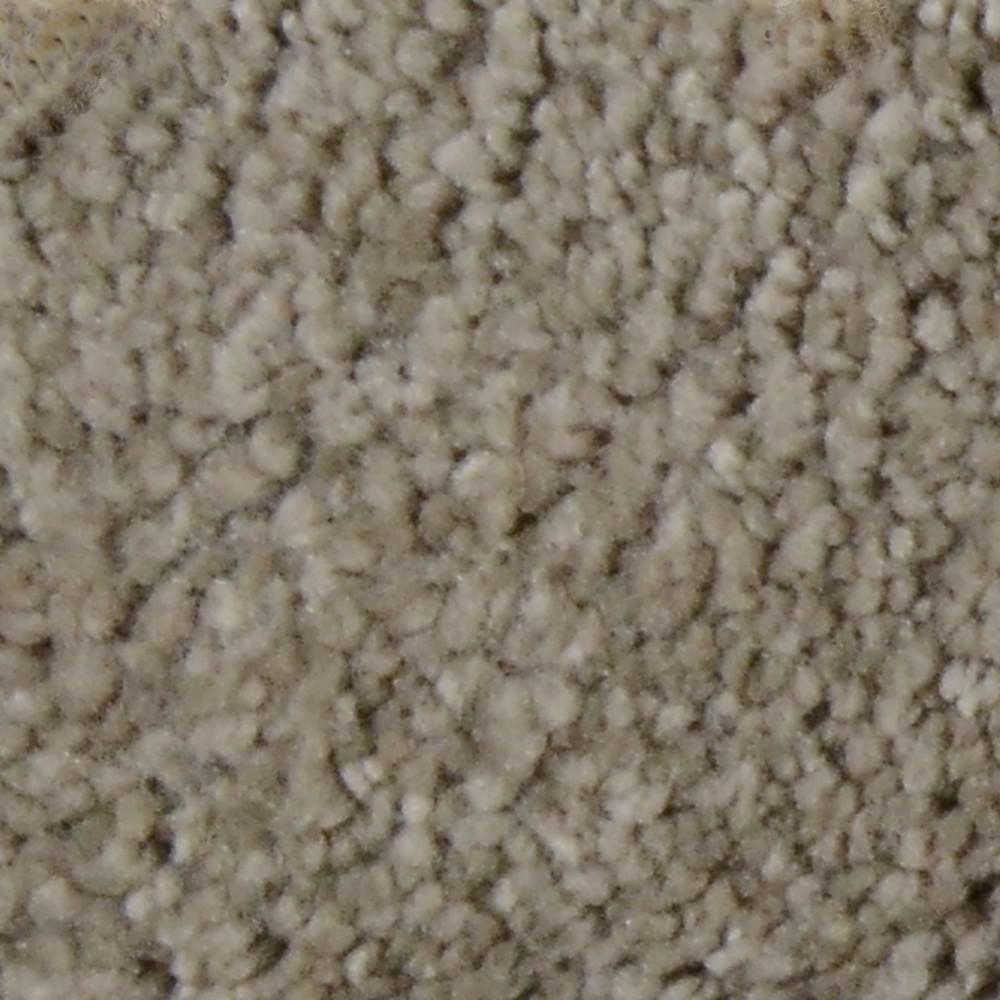 Carpet Sample - Harvest I - Color Stockdale Texture 8 in. x 8 in.