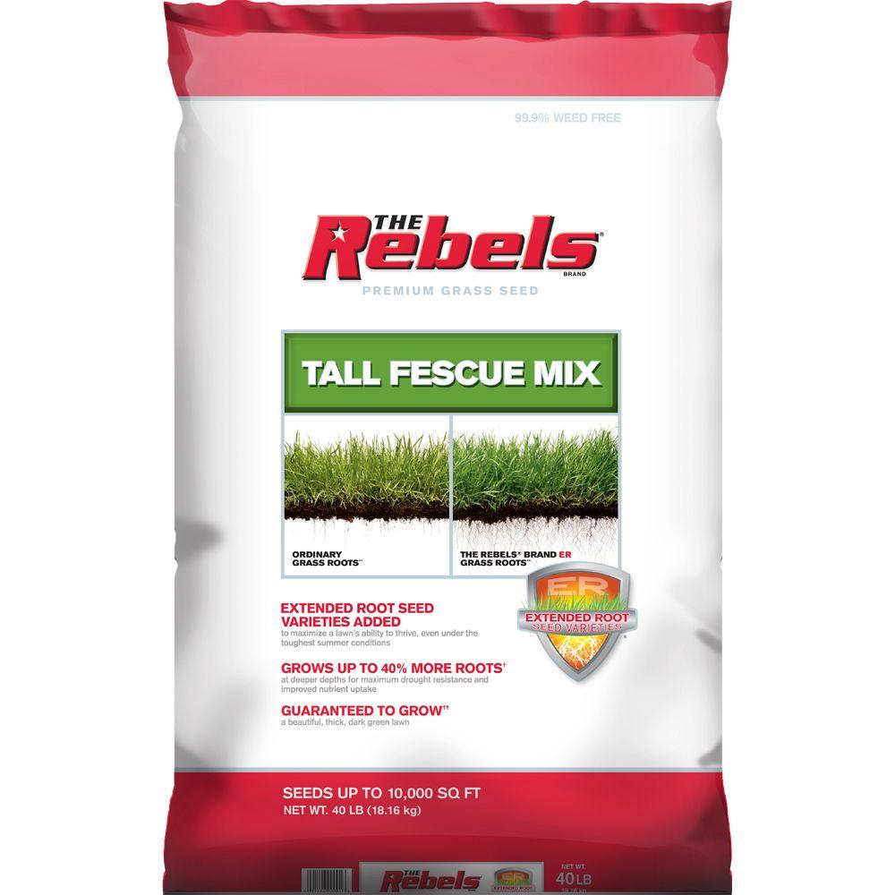 The Rebels 40 lbs. Tall Fescue Grass Seed PCG Mix
