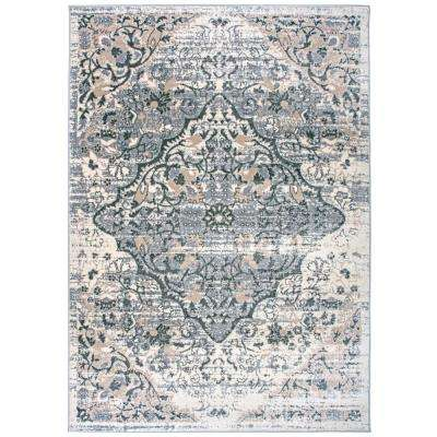 """Distressed Traditional Area Rug 7'10"""" x 10' Gray"""