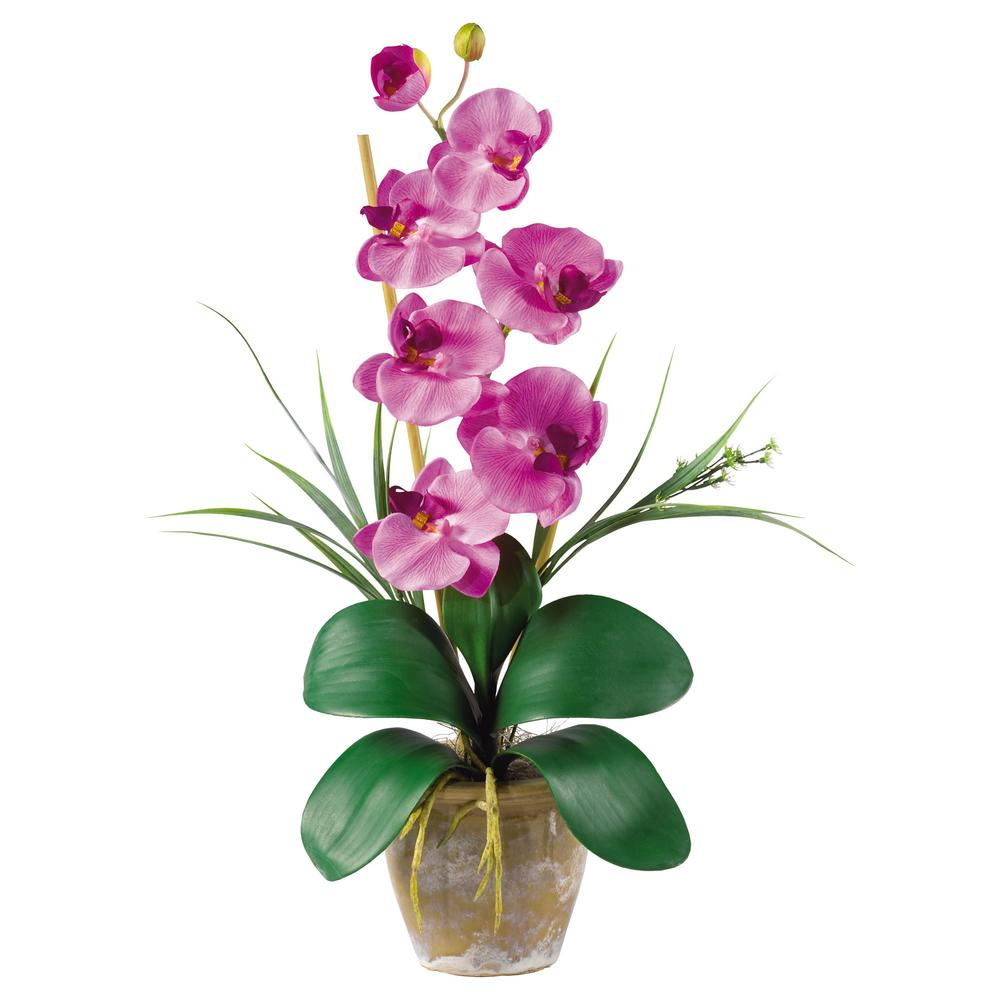 Nearly Natural 21 in. Phalaenopsis Silk Orchid Flower Arrangement in Mauve Nearly Natural 21 in. Phalaenopsis Silk Orchid Flower Arrangement in Mauve