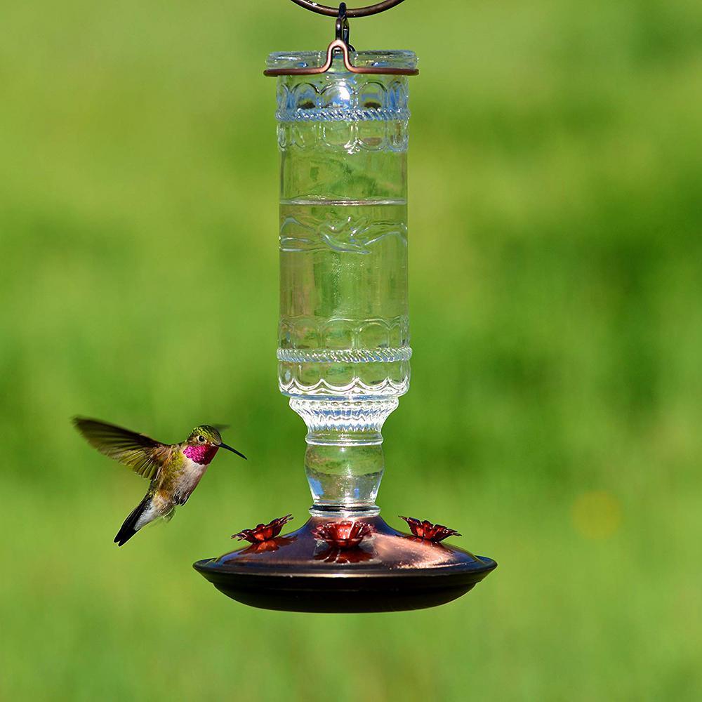 Glass Bottle Hummingbird Bird Feeder Antique Blue Vintage Nectar Hanging Perches