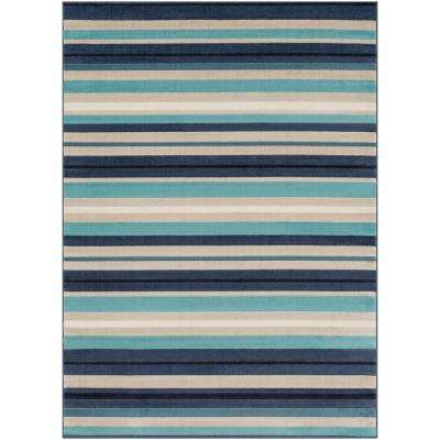 Striped 9 X 12 Area Rugs Rugs The Home Depot