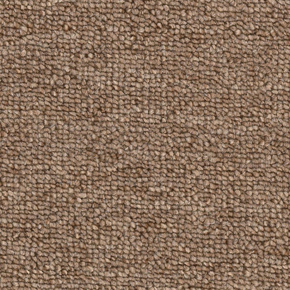 Carpet Sample - Main Rail 26 - Color Umber Texture 8 in. x 8 in.
