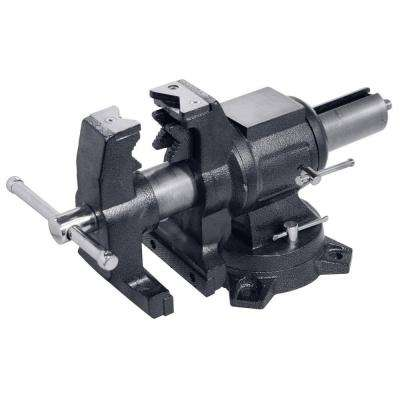 5 in. Multi-Purpose Rotating Pipe and Bench Vise with Swivel Base