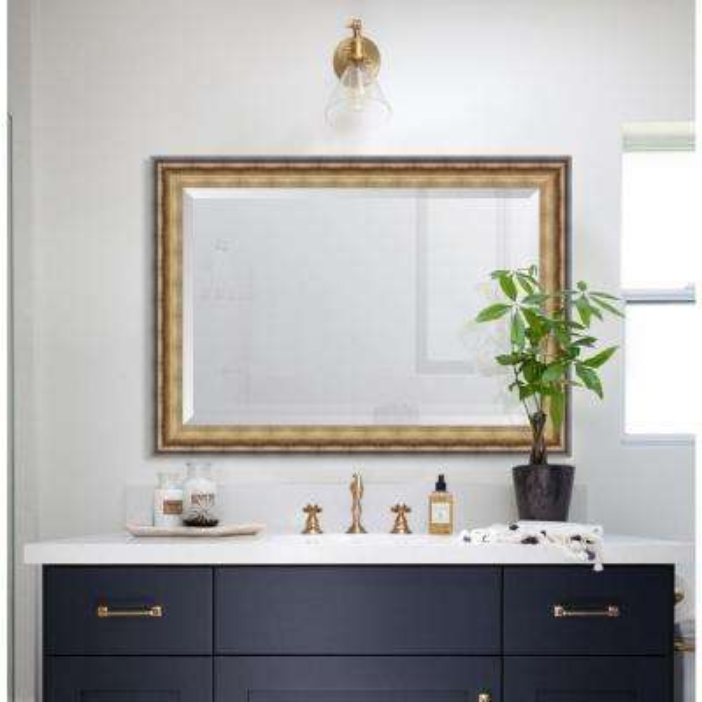 31 in. x 43 in. Framed Black & Soft Gold Radiant Swan Mirror
