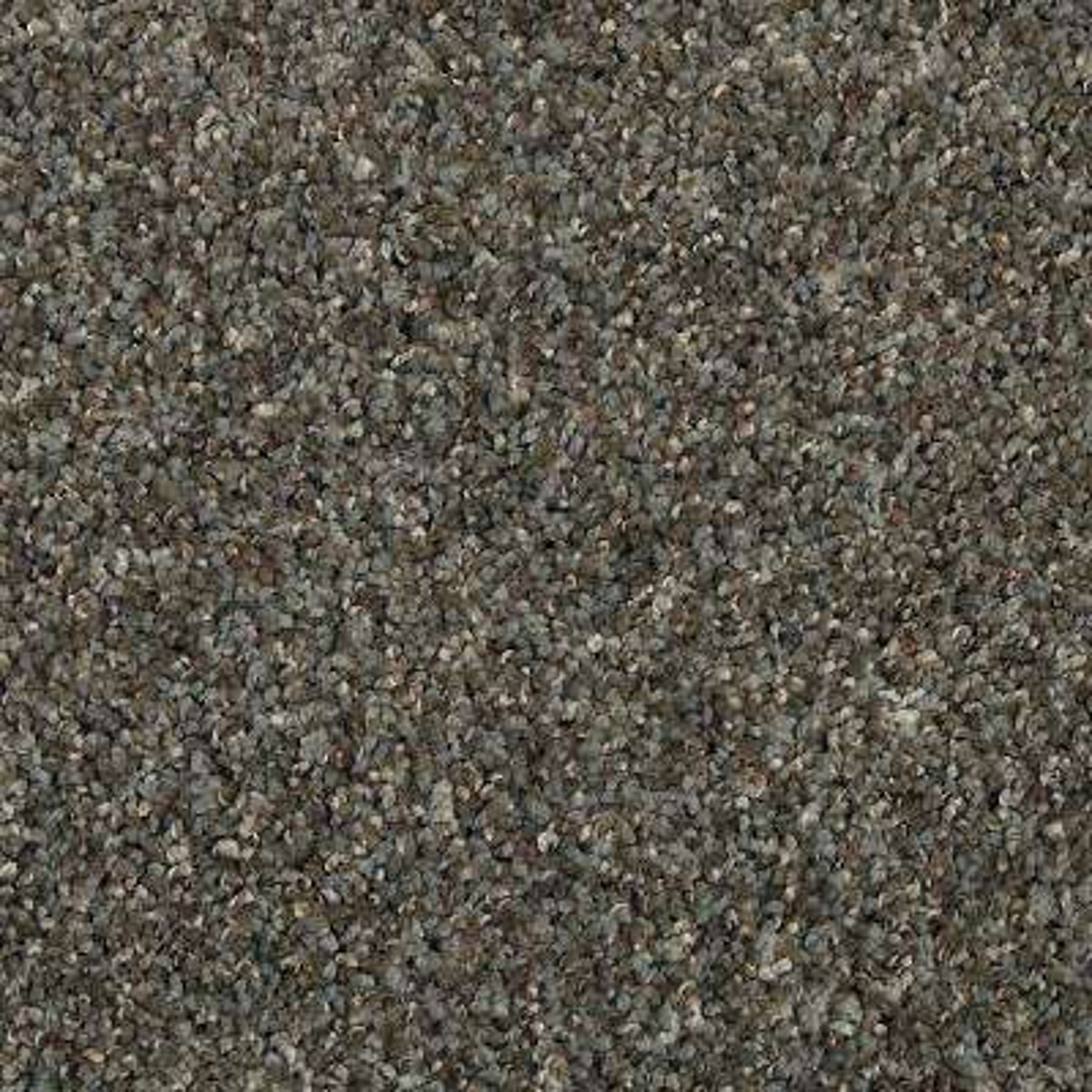 Barx II - Color Dorian Texture 12 ft. Carpet
