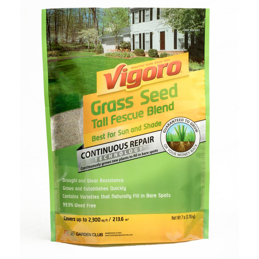 Vigoro 7 lb. Tall Fescue Grass Seed Blend