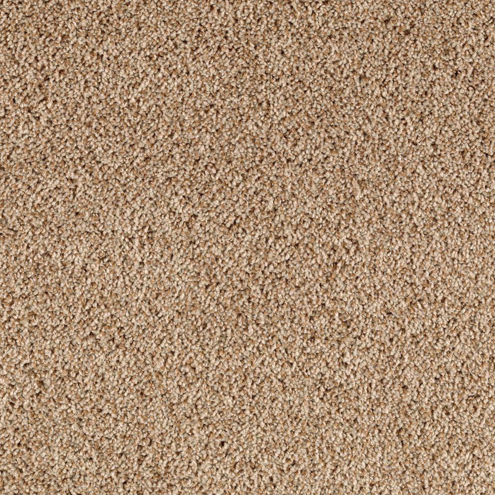 Home Decorators Collection Carpet Sample Rookie Ii
