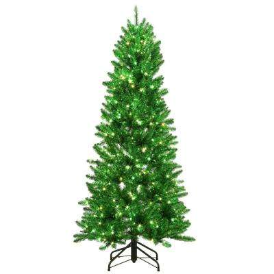 6 ft. Pre-Lit Shiny Green Fraser with Warm White and Green Color-Changing LED Lights