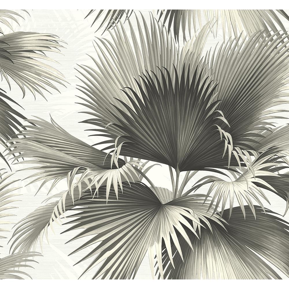 Kenneth James Endless Summer Black Palm Wallpaper Sample