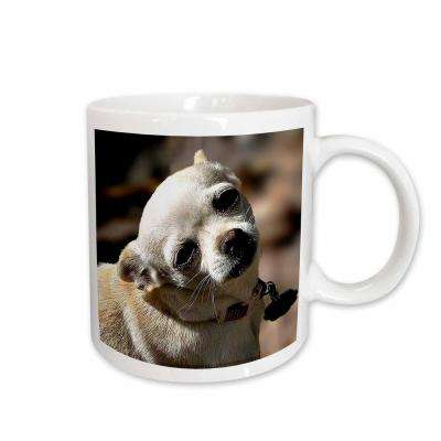 Dawn Gagnon Photography Animals White Chihuahua posing for photograph 11 oz. White Ceramic Coffee Mug
