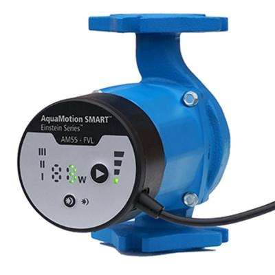 Einstein ECM Cast Iron Circulator Pump with Check Valve and Line Cord