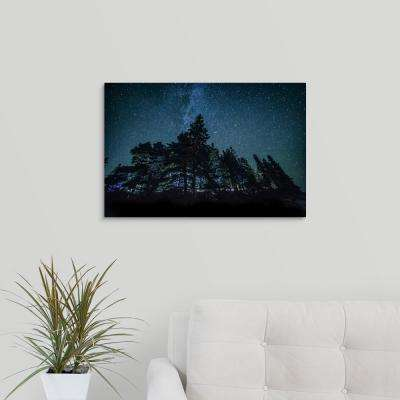"""Trees and the night sky in Bar Harbor, Maine"" by  Scott Stulberg Canvas Wall Art"