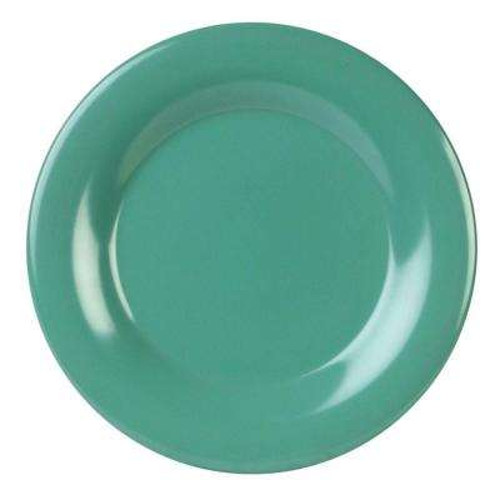 Coleur 9-1/4 in. Wide Rim Plate in Green (12-Piece)