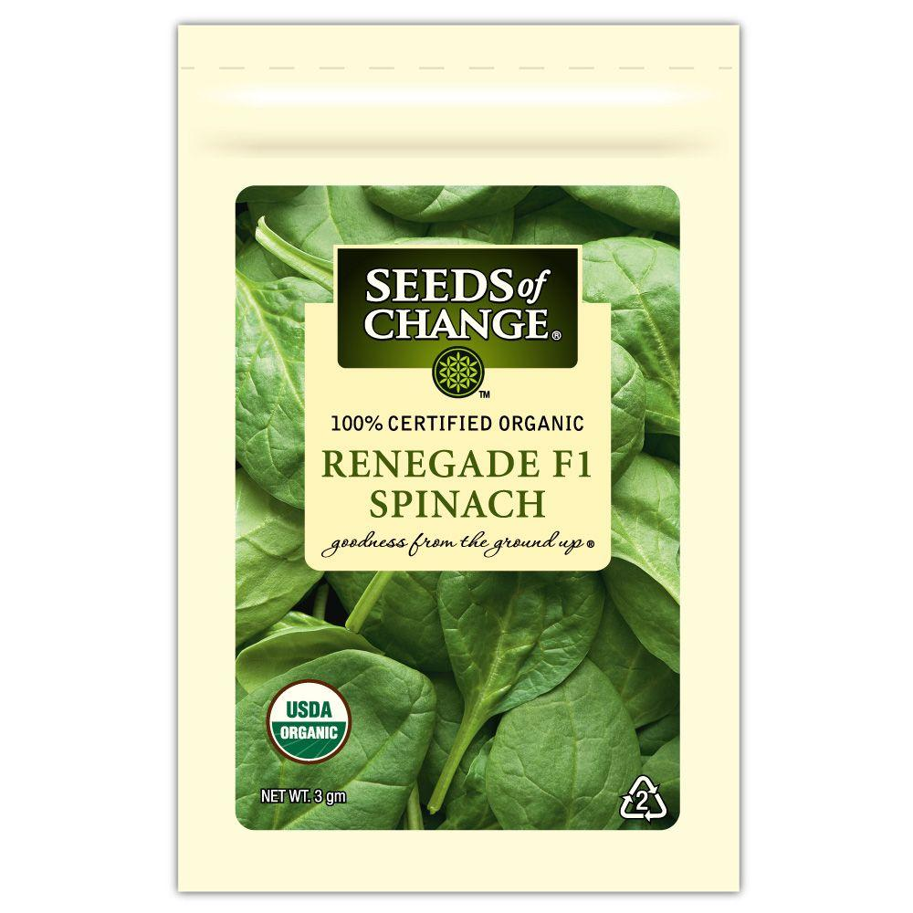 Seeds of Change Spinach Renegade F-1 Seed