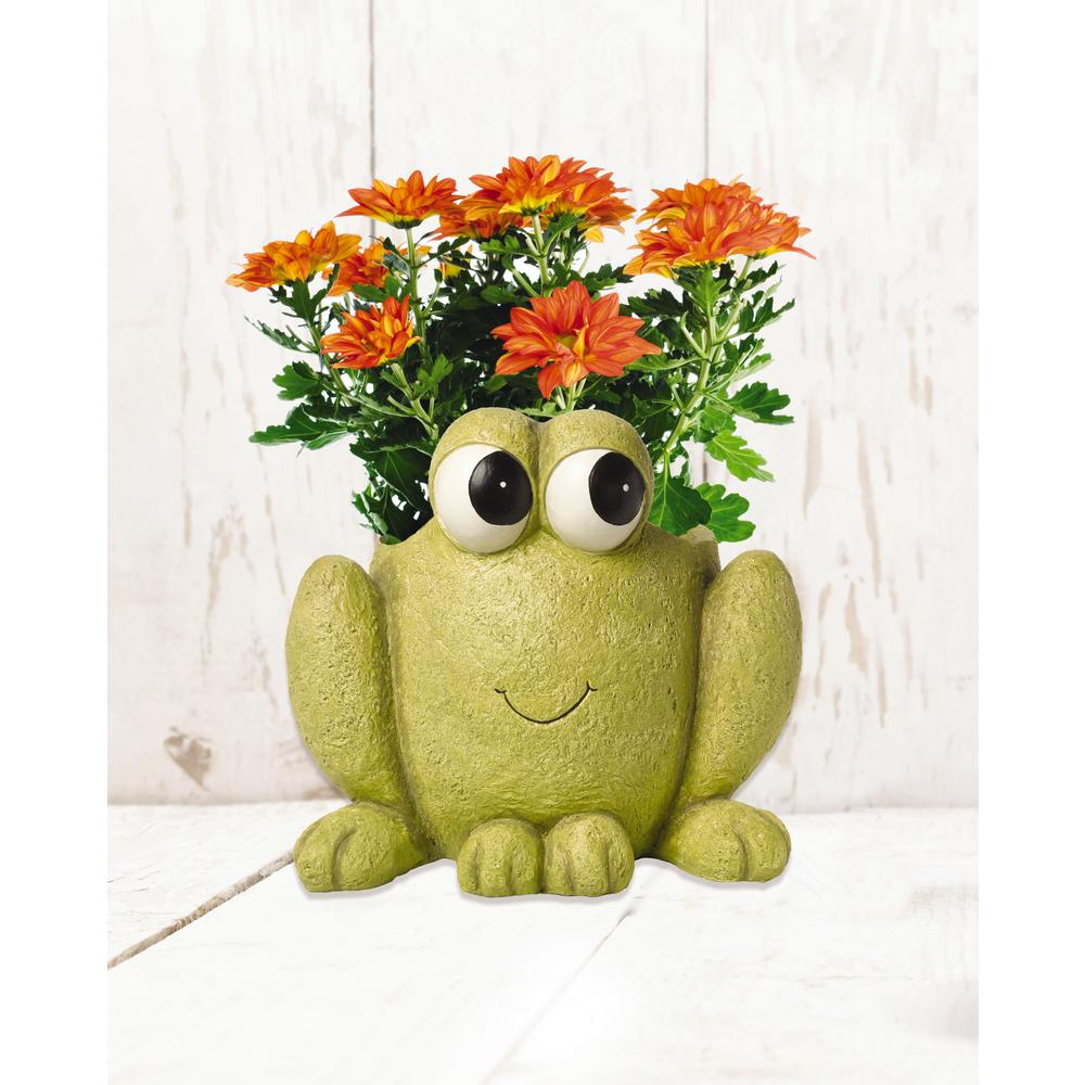 Precious Moments Frog Hop To It 6 in. Dia Green Resin Planter A wide-eyed frog offers a smile and happy expression while holding a favorite planting. Made of durable lightweight resin with a bottom drainage hole for easy placement and planting. Playful grins and thoughtful compliments are sure to be inspired by this handy planter, which not only brightens decks and gardens, but your spirits as well. Give this thoughtful deck and garden planter as a Mothers Day gift or 'just because' you love beautiful surroundings. Makes a perfect spot for a small fairy garden. Crafted in resilient, lightweight resin. Approximately 9.25 in. H. x 6 in. Dia opening. Holds approximately 1 Gal. of soil. Flowers not included. Color: Green.
