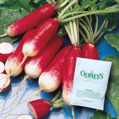 Radish French Breakfast (500 Seed Packet)