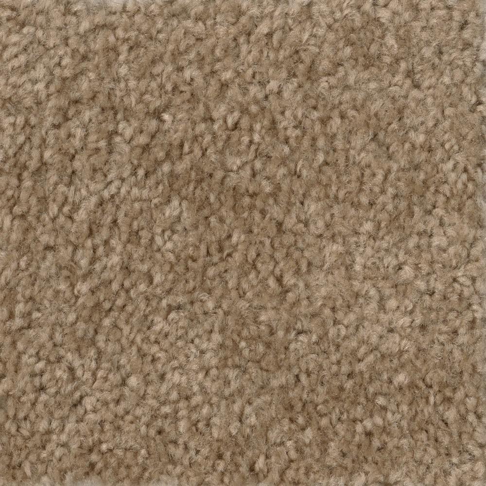 TrafficMaster Hot Shot II - Color Tuscan Texture 12 ft. Carpet