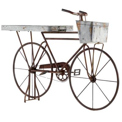 Iron Bicycle Planter with Rust Brown Finish