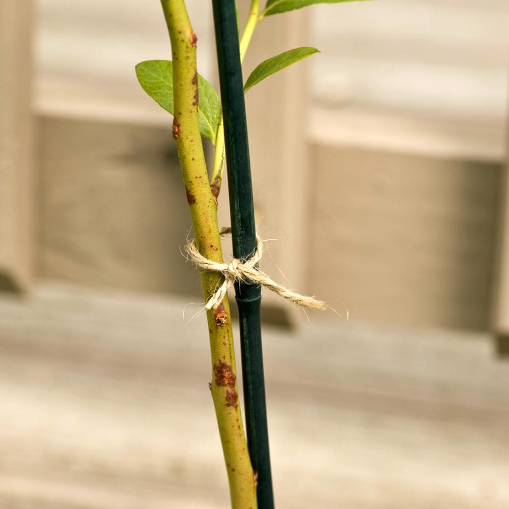 4 ft. Bamboo Stake