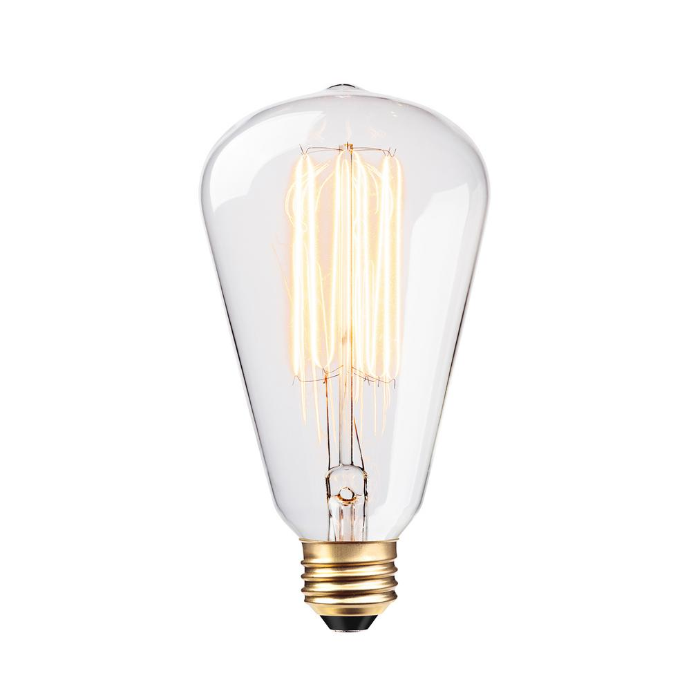 Globe Electric 60 Watt Vintage Edison S Type Incandescent Light Bulb 83008 The Home Depot
