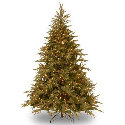 9 ft. Frasier Grande Artificial Christmas Tree with Clear Lights