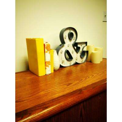 13 in. x 12 in. Plastic Lighted Ampersand Wall Art