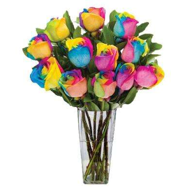 Gorgeous Rainbow Rose Bouquet in Clear Vase (12 Stem) Overnight Shipping Included