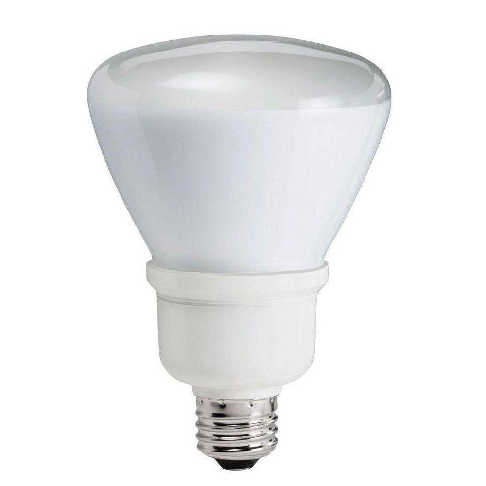 75W Equivalent Soft White R30 Flood CFL Light Bulb (2-Pack)