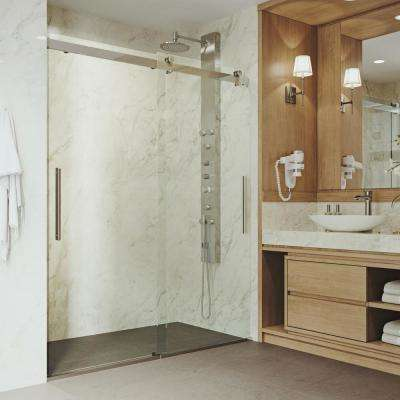 Caspian 60 in. x 74 in. Frameless Sliding Shower Door in Stainless Steel