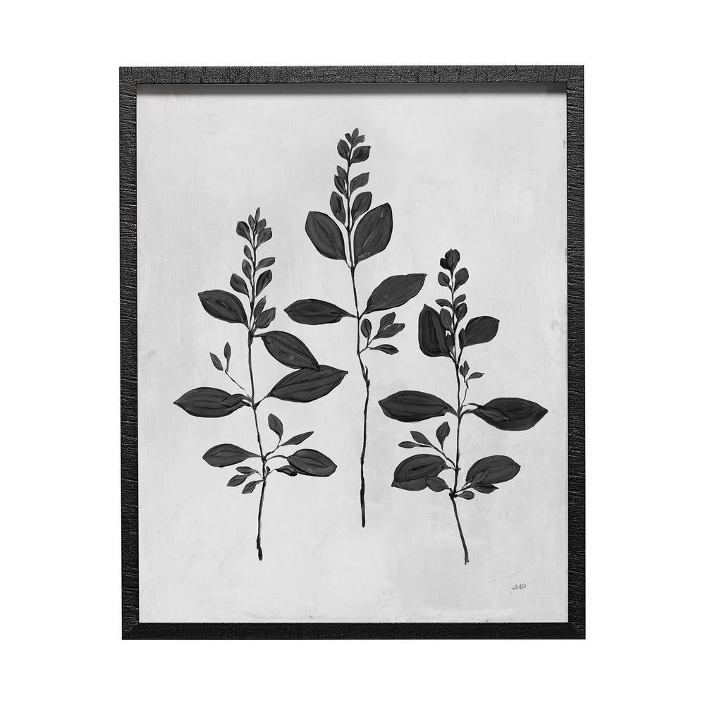 Botanical Study IV Framed Art Botanical Print (25.5 in. x 31.5 in.)