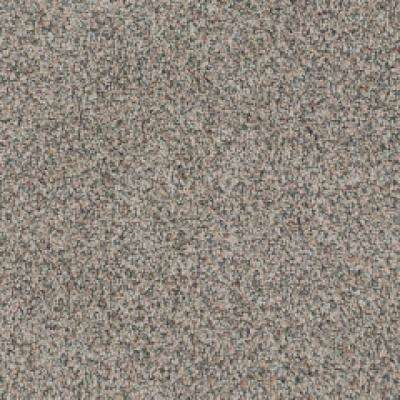 Carpet Sample - Serendipity I - Color Toffee Bliss Texture 8 in. x 8 in.