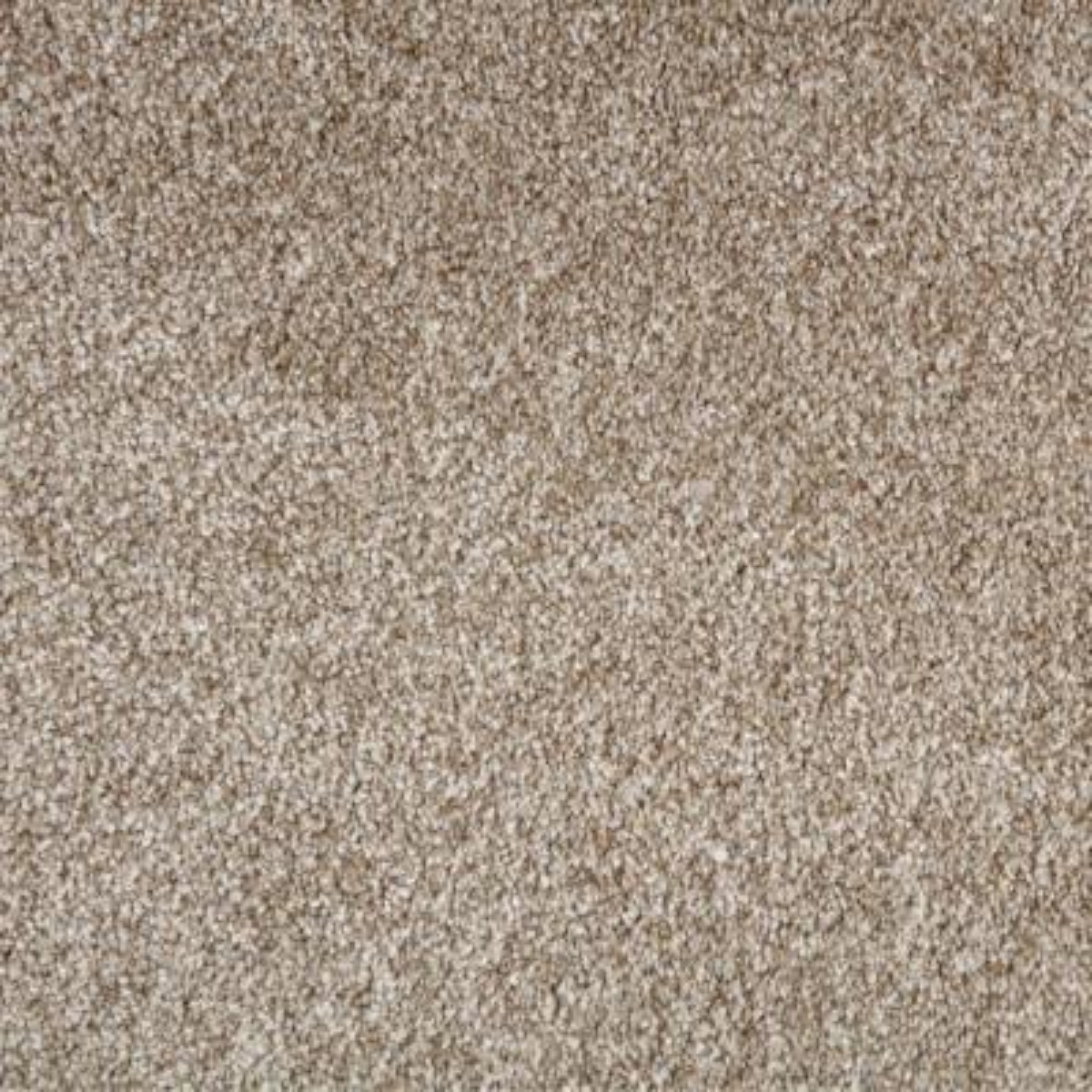 Superiority II - Color Oak Flats Texture 12 ft. Carpet