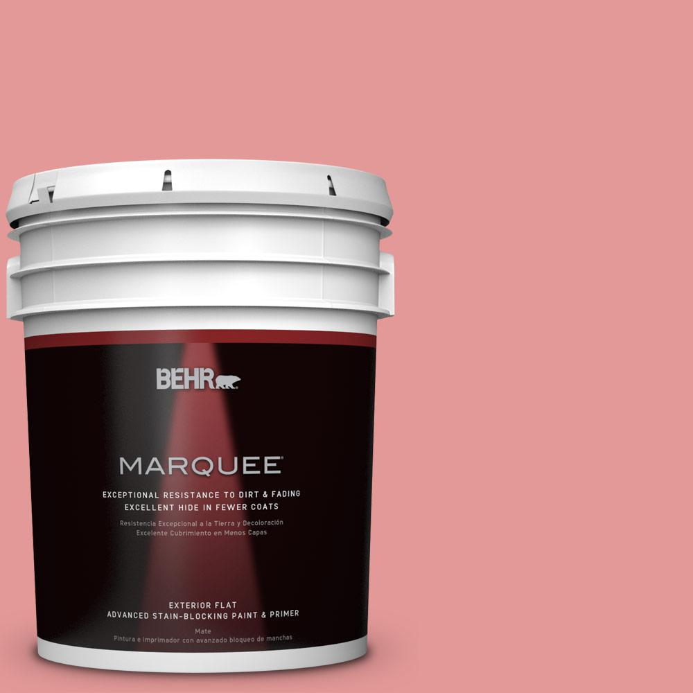 BEHR MARQUEE 5-gal. #M160-4 She Loves Pink Flat Exterior Paint