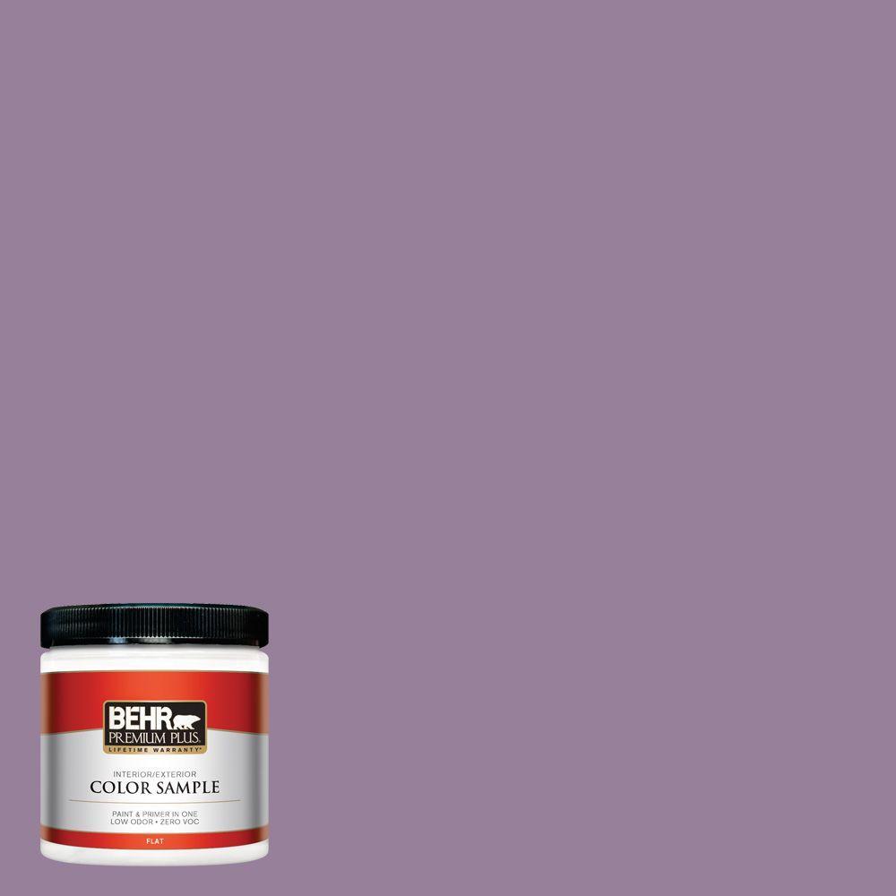 8 oz. #670D-6 Mixed Berries Interior/Exterior Paint Sample