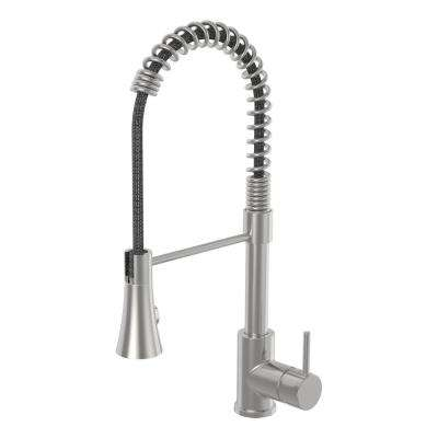 Dia Single-Handle Pull-Down Sprayer Kitchen Faucet in Stainless Steel