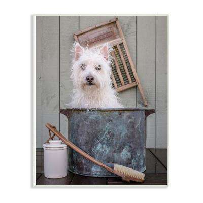 "10 in. x 15 in. ""Ready for a Bath Little White Dog in a Wash Tub Photograph"" by Edward M. Fielding Wood Wall Art"