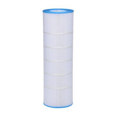 10-1/16 in. Pentair Clean and Clear R173216 150 sq. ft. Replacement Filter Cartridge