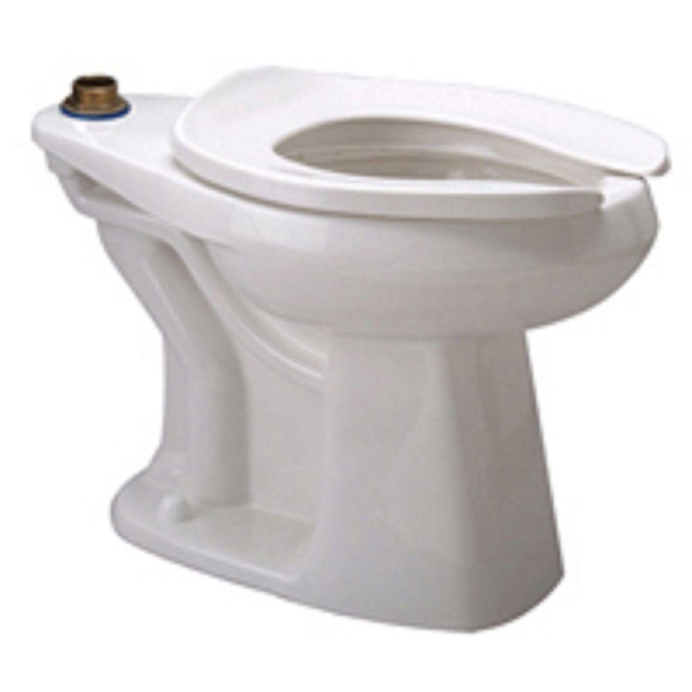 Zurn Elongated Toilet Bowl Only in White by Zurn