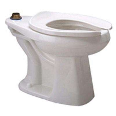 Elongated Toilet Bowl Only in White